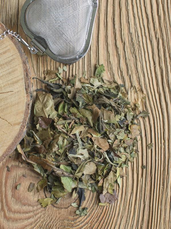 Biała herbata Pai Mu Tan